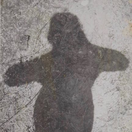Intérprete / Vidala para mi sombra