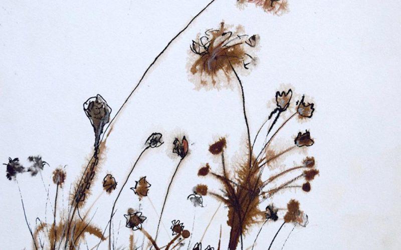 Tintas / flores